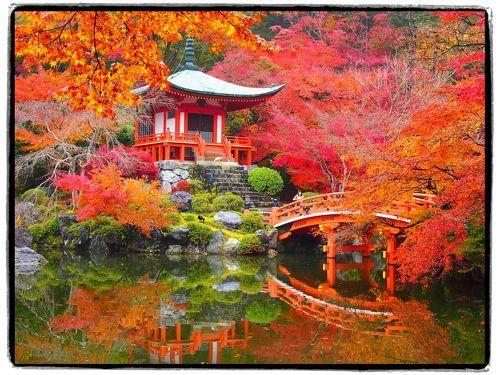 「醍醐寺」は、874年に創建されたと伝えられる真言宗醍醐派の総本山で、太閤秀吉の「醍醐の花見」で有名ですが、紅葉の名所としても知られています。  今回訪れてみて、特に朱塗りの弁天堂が紅葉に包まれ、林泉の水面を赤く染める様は、まさに錦秋の候にふさわしい光景でした♪  〔旅の行程〕 ・山科駅 ~ 醍醐駅 ~ 醍醐寺(醍醐寺三宝院) ~ 醍醐駅 ~ 山科駅 ~ 京都駅   【旅行記その1】~秋雨に濡れる門跡寺院・毘沙門堂へ~  http://4travel.jp/traveler/akaitsubasa/album/10728892/ 【旅行記その3】~2012 清水寺・秋の夜間特別拝観~  http://4travel.jp/traveler/akaitsubasa/album/10730484/ 【旅行記...