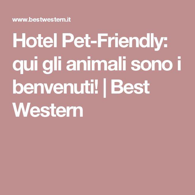 Hotel Pet-Friendly: qui gli animali sono i benvenuti!   Best Western
