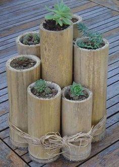 BlogMaisFlores.com.br com imagens, videos, curiosidades e dicas sobre flores, plantas, jardins e gramados.