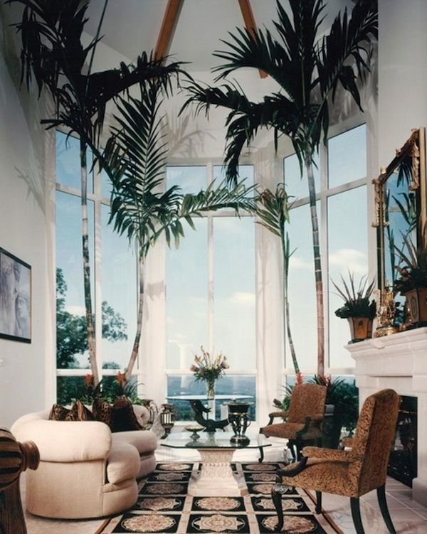 interior design tree - 1000+ images about Decorar con plantas / Home plants on Pinterest ...