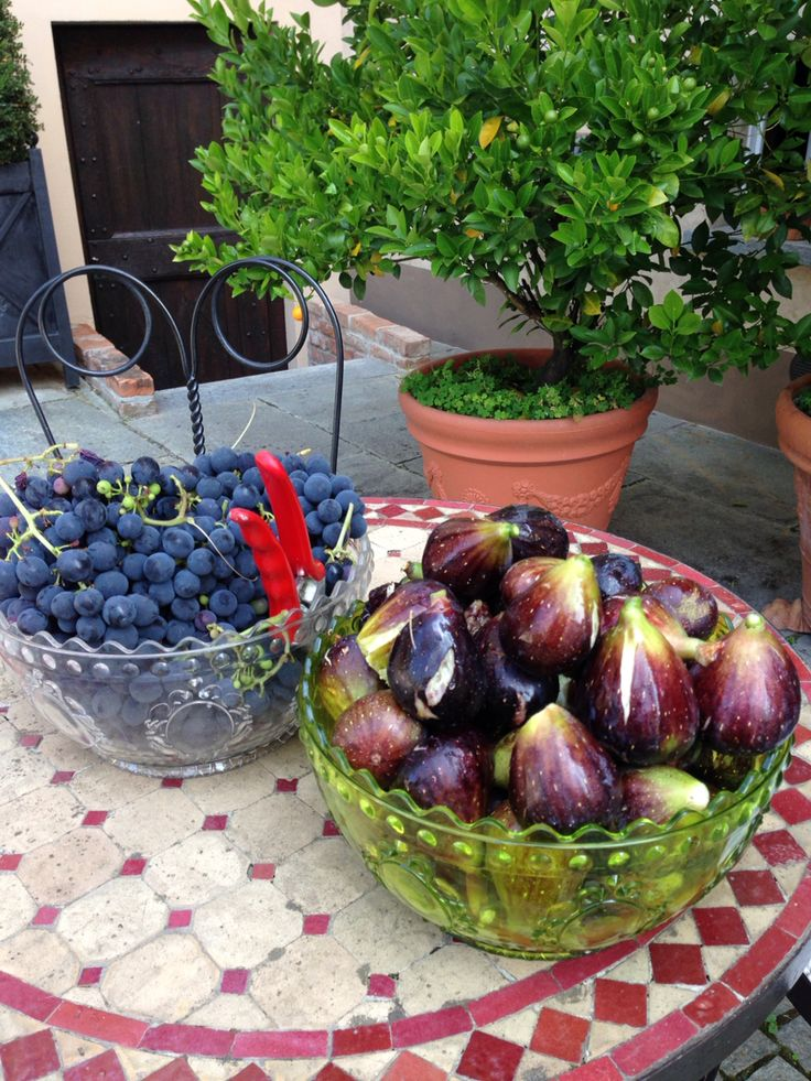 #fig & #grapes in #Cortegondina