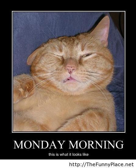 Monday morning. LoL