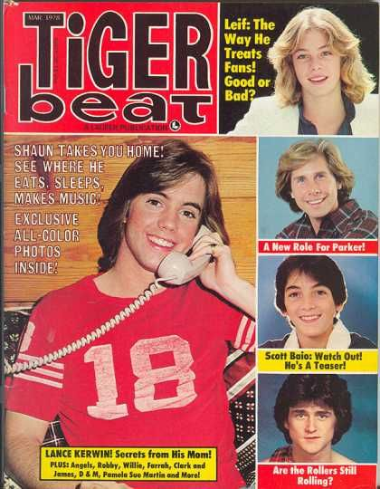 Tiger beat - with my favs Scott Baio, Leif and Shaun Cassidy!