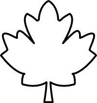 Image Result For Maple Leaf Outline Clipart