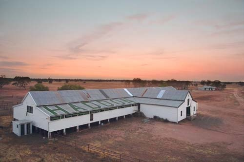 """Heritage, excellence, a focus on family and a desire to innovate collide north of Warren, in central New South Wales, on one of Australia's premier Merino stations """"Haddon Rig""""."""