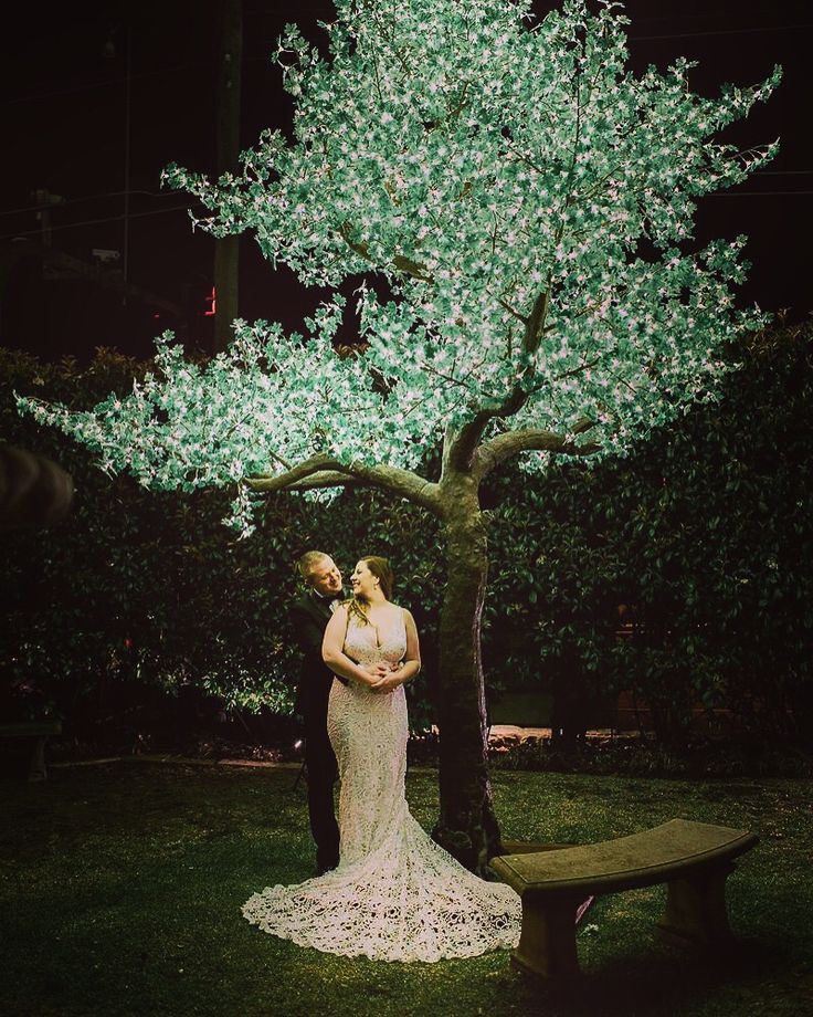 Our gorgeous couple under our magical tree ✨