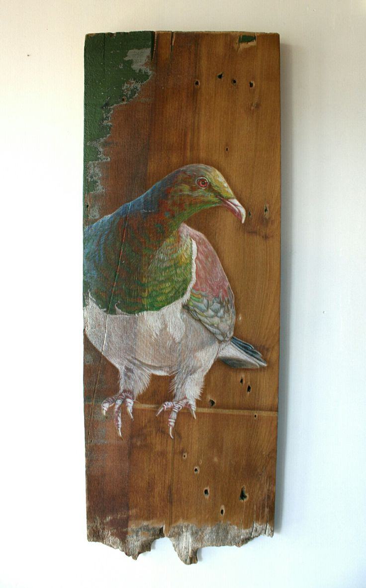 Kereru, NZ Native bird, Watercolour Pencil on Reclaimed Kauri Weatherboard, 200 x 555mm, by Cherith Curtis