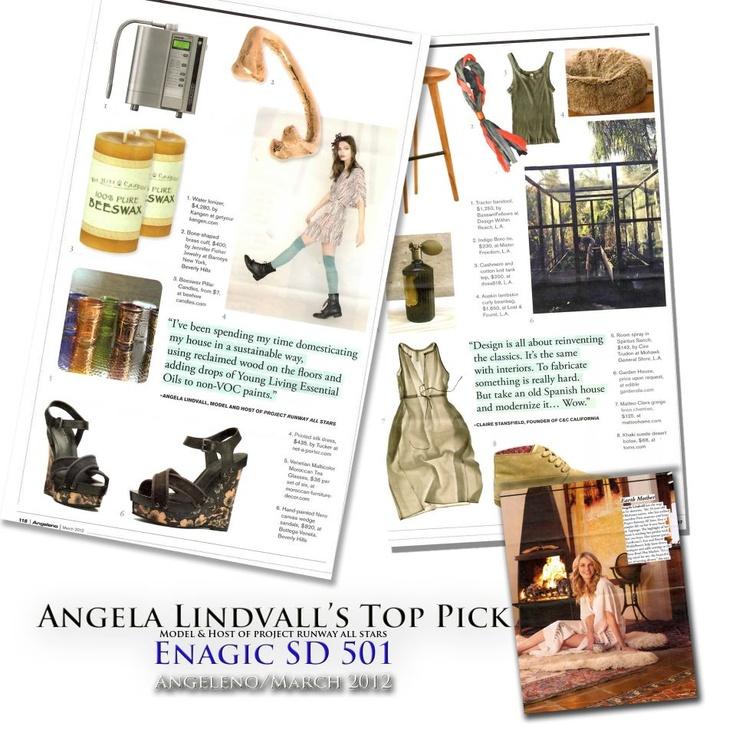 Kangen Water Angela Lindvall's top pick modernluxury.com