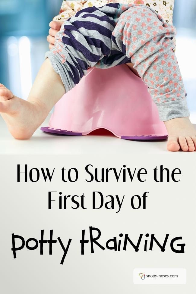 Potty Training. Surviving Day One.