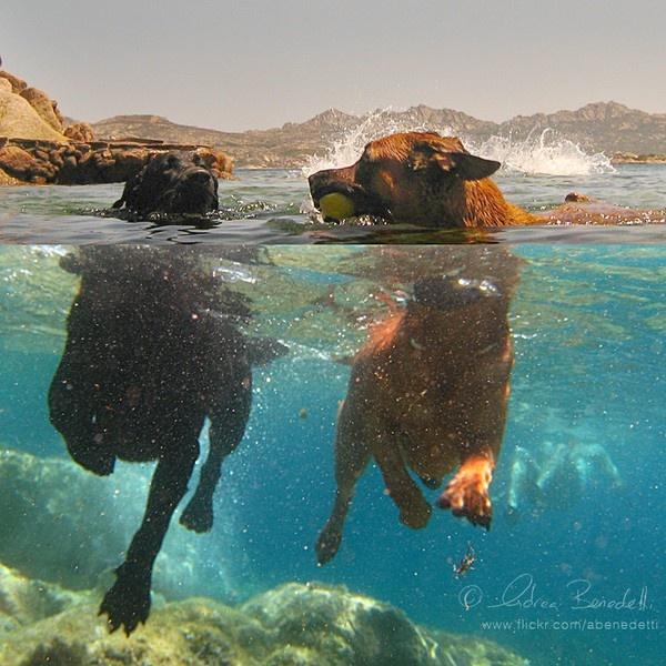 underwater.. mominstands