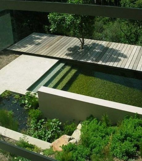 Pure lines, garden design with a natural swimming pool, filtered by plants and chlorine-free _