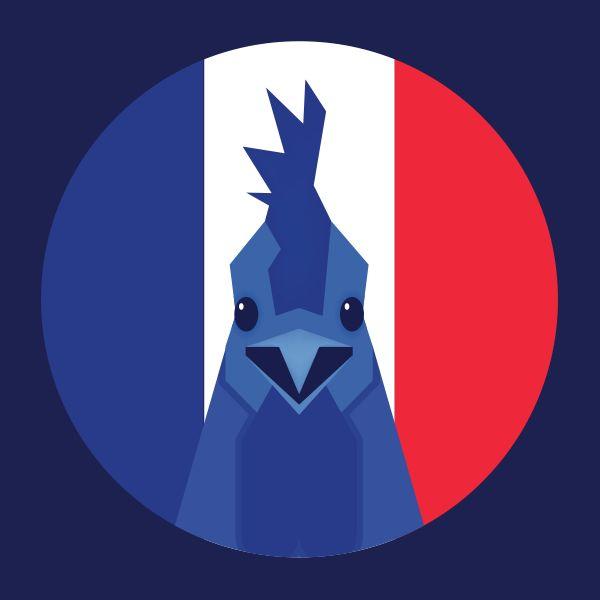 Animal Allstars, des logos créatifs pour les équipes de l'Euro - Le coq français !
