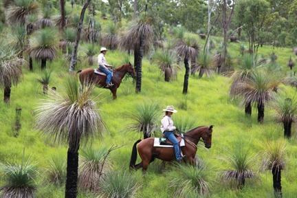 Taking in the coast on horseback. Photo by Kate Johns - salt magazine
