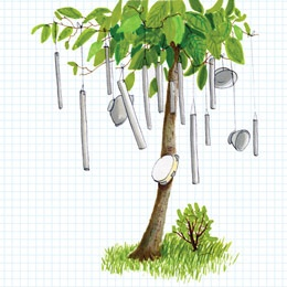 Make your own tree sized wind chime / instrument. Found objects or cut copper pipes :)