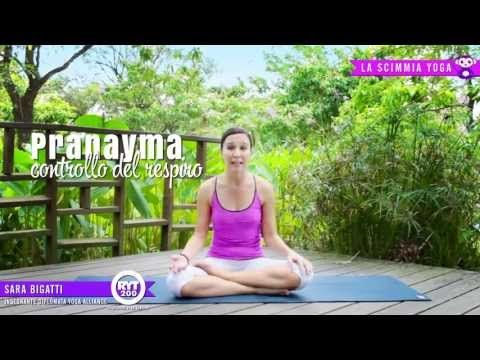 Yoga - Respirazione 3 semplici tecniche - Pranayama - YouTube