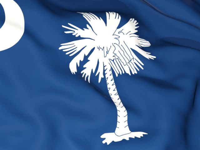 Flag background. Download flag icon of South Carolina