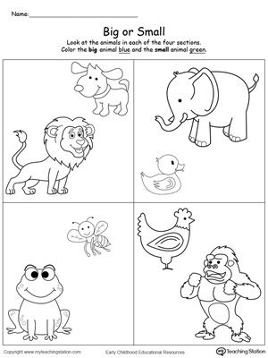 Comparing Animals Sizes Big and Small : Teach your preschooler the concept of big and small with this printable math worksheet. To complete the exercise your child will compare the shapes and identify which is small and which big.