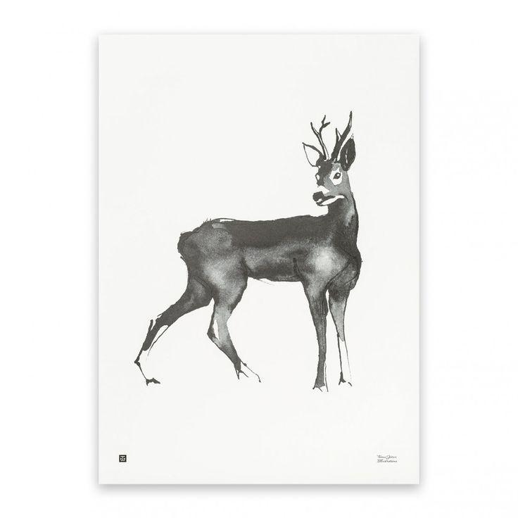 Roe Deer Druck   Teemu Järvi Illustrations