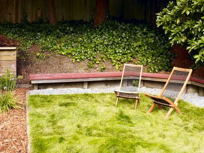 3 strategies for replacing your lawn