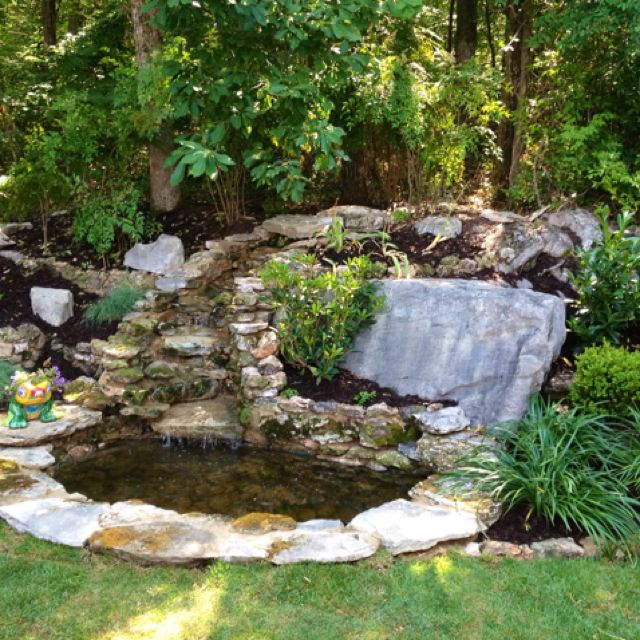 Backyard Pond For The Home Pinterest Pond
