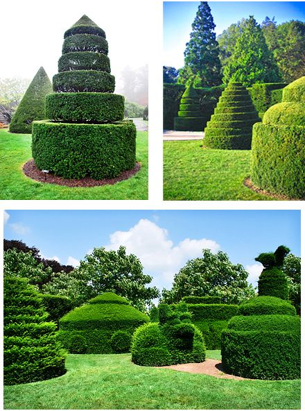 Grand topiaries in longwood gardens in pennsylvania i for Landscaping longwood