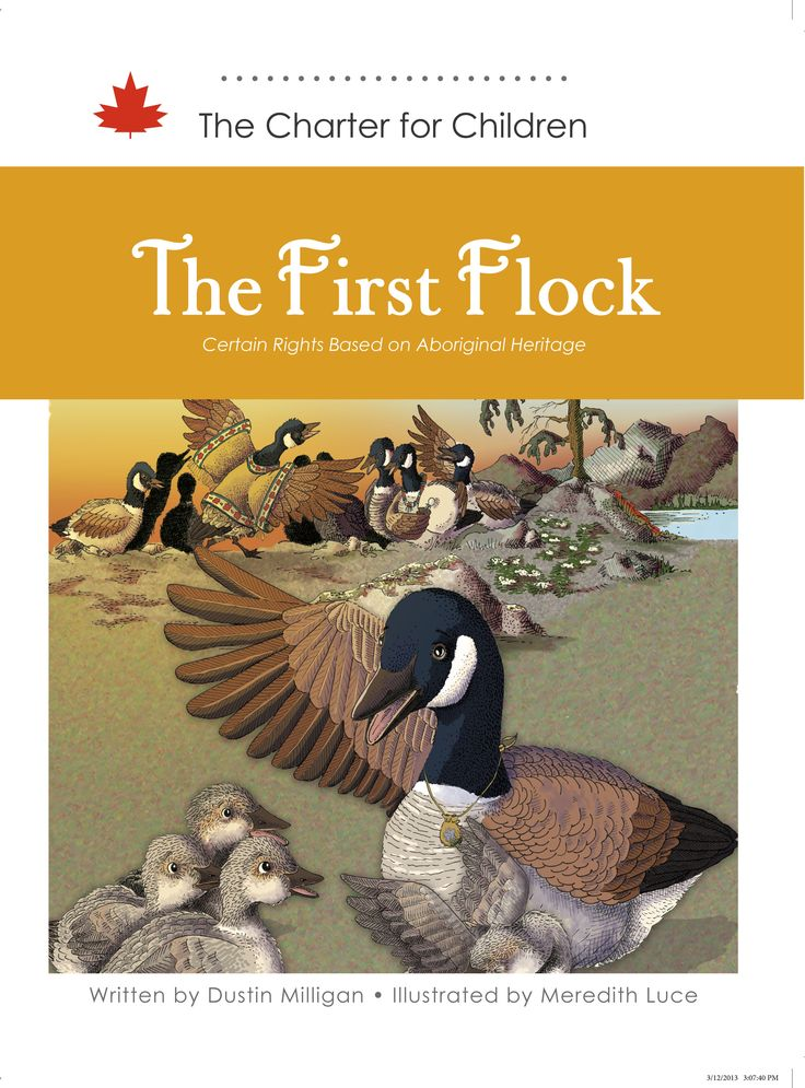 This story seeks to teach children about Aboriginal rights, which are guaranteed in section 35 of the Constitution Act, 1982.