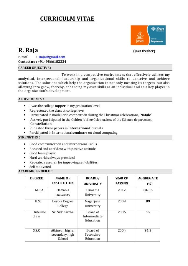 sample resume headline for software testing