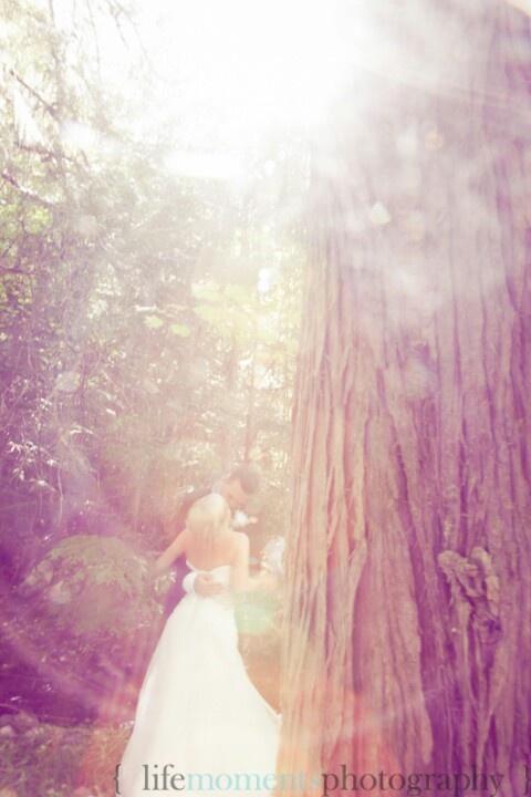 Wedding kiss in a Dream. 2012.