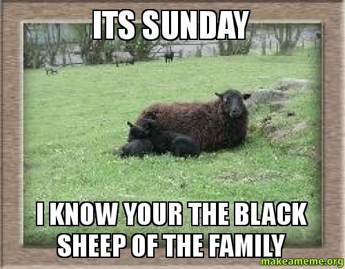 24+ Hilarious Sunday Memes and Images - Freshmorningquotes
