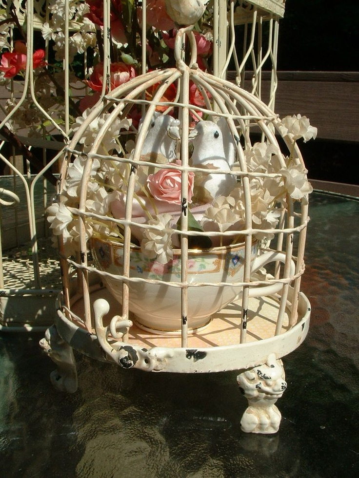 Best images about what do with a birdcage on