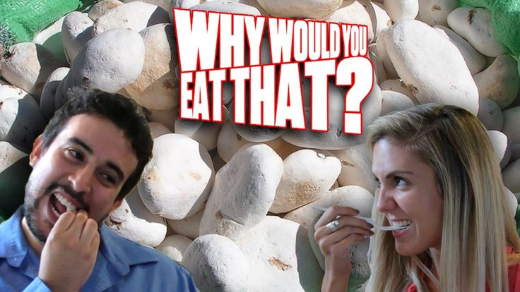 Why would you eat that? Check out as the crew from Tasted explore crazy food from around the world. #Tasted #Food #DitchTV