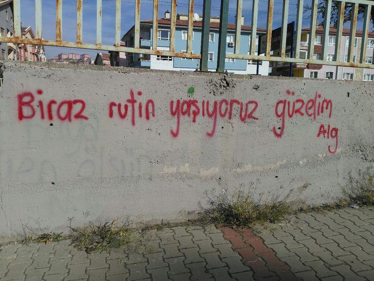 Turkey Street Art