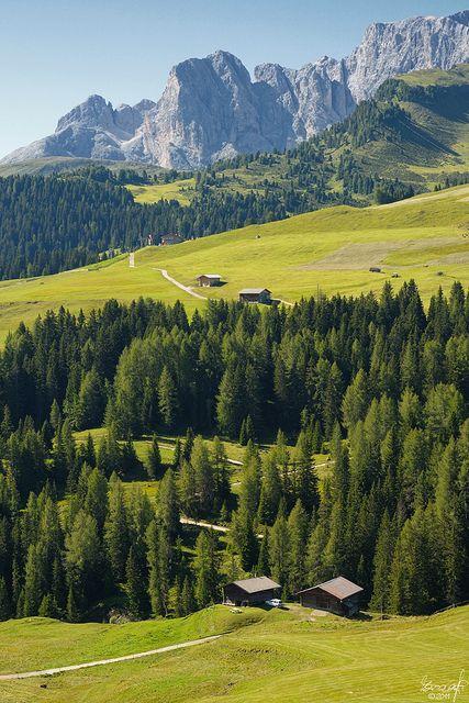 Landscape, Alpe di Siusi - Seiser Alm, Italy South Tyrol Trentino-Alto Adige