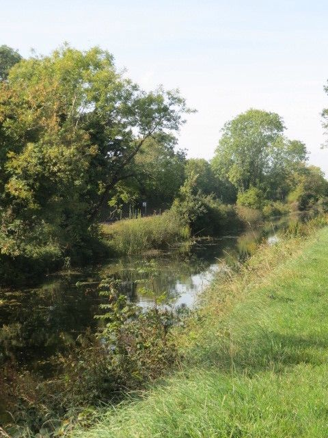 Royal Canal Co. Kildare