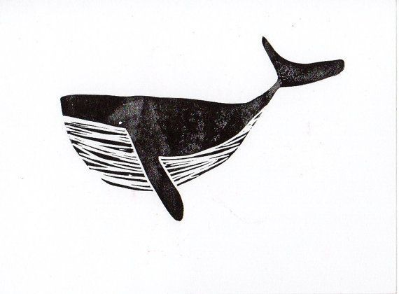 Image result for sgraffito whale