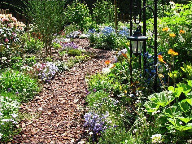 28 besten Beetgestaltung Bilder auf Pinterest Blumenbeete - reihenhausgarten vorher nachher