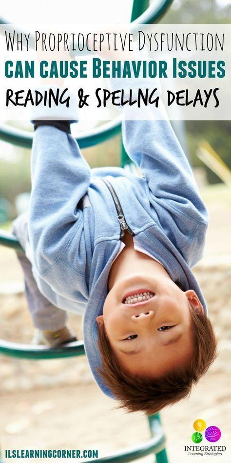 Proprioceptive Dysfunction Causes Sensory Seeking and Sensory Avoiding Behavior   ilslearningcorner...