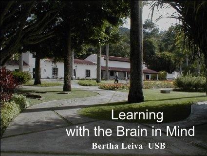 Bertha´s Brain Presentation Learning with the Brain in Mind, via Slideshare