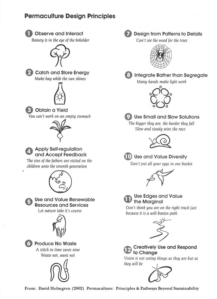 permaculture design principles http://www.cvnfarm.org/permaculture%20design%20principles.jpg