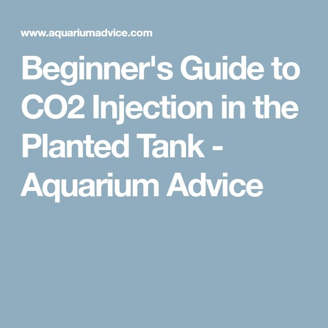 Beginner's Guide to CO2 Injection in the Planted Tank - Aquarium Advice