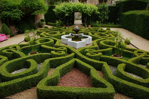 100 best images about knot gardens on pinterest gardens for English knot garden designs