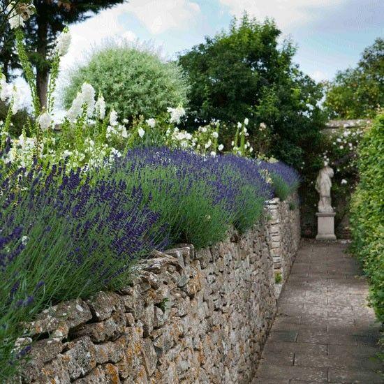 Les 165 meilleures images du tableau mixed border sur for Jardin anglais mixed border
