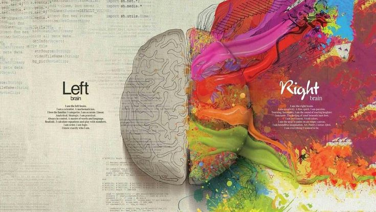 Left Brain Right Brain School College Poster Wall Art M126