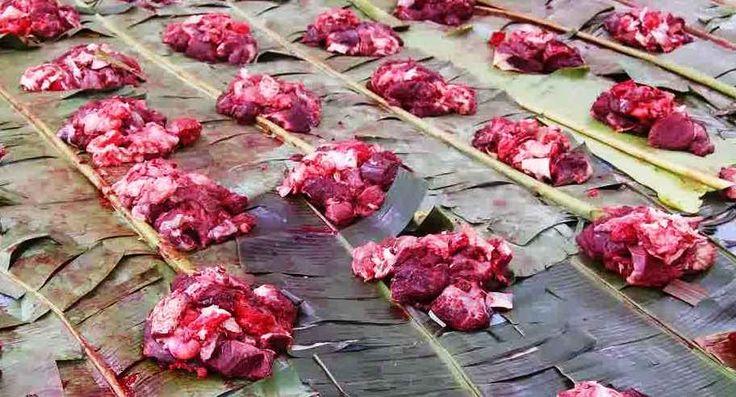 Memberikan Daging Kurban kepada Orang Kafir, Haramkah?
