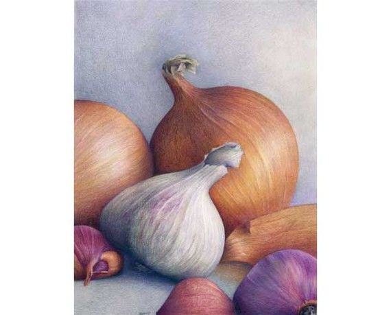 For Kitchen? - 'Sublime Onions' art print of a still life color pencil by JoBradney, $30.00