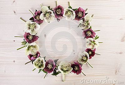 Flower Wreath Creative Arrangement On Light Wood - Download From Over 60 Million High Quality Stock Photos, Images, Vectors. Sign up for FREE today. Image: 91355421