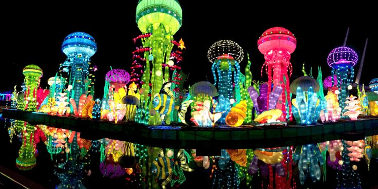 Must see these top 7 #attractions in #dubai #glow #garden #parks #tour #travel