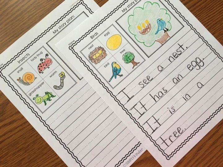 1000+ ideas about Kindergarten Curriculum on Pinterest ...