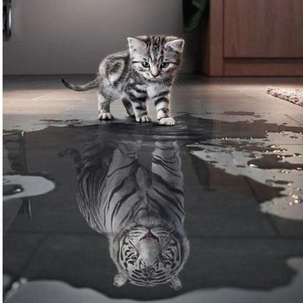 "Diamond Mosaic 3D DIY ""Cat Turn Tiger"" Craft – Modern Market Online"