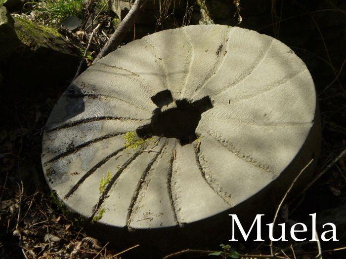molin_carlones_muela00.JPG (700×525)